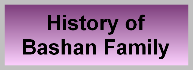 Bashan Foundation, History